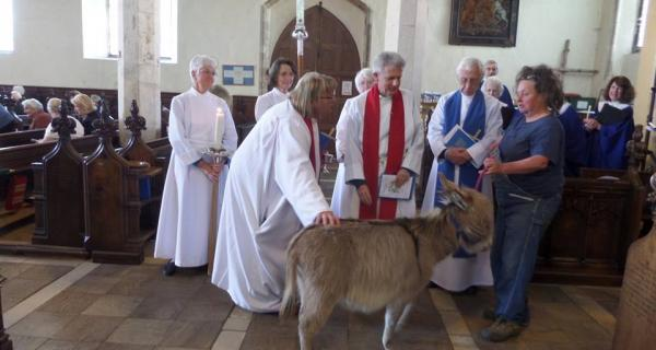 Beautiful donkey taking part in our Palm Sunday worship